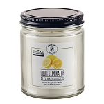 Odor Eliminator 9 oz Jar Candle - Citrus Fresh - Apricot Coconut Wax