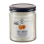 Odor Eliminator 9 oz Jar Candle - Orange Zest - Apricot Coconut Wax