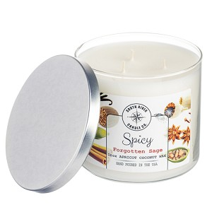 Spicy Collection - 18 oz 3 Wick Tumbler Jar - Apricot Coconut Wax